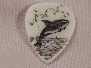 Scrimshaw Bovine Bone Guitar Pick - Orca Whale photo