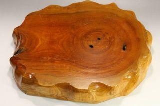 32 Japanese Keyaki Zelkova Wood Wooden Display Board photo