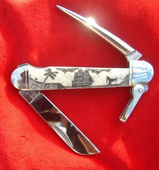 Nautical Scrimshaw,  Ship,  Whale,  Palm Tree.  Marlin Spike,  Folding Knife/knives - photo