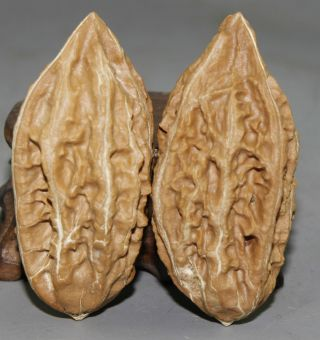 A Ancient Chinese Hand - Carved Walnut photo
