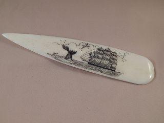 Scrimshaw Buffalo Bone Spear Handle Letter Opener Side Ship - Whale Tail photo
