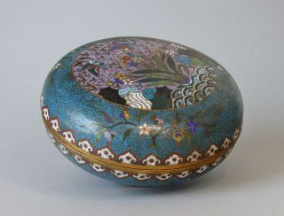 Antique 19th Century Chinese Cloisonne Box And Cover - Large Size photo