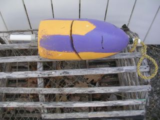 Maine Blue Yellow Lobster Trap Buoy Pot Bouy Float Nautical Ocean Shore 15020 photo