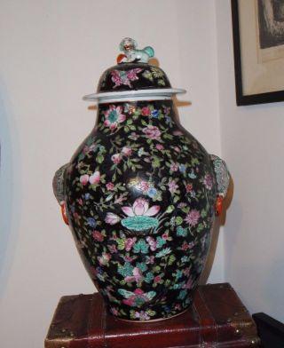Vintage Large Chinese Hand Painted Black Porcelain Jar/ Elephant Handles/ photo