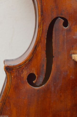 Antique American Violin R.  D.  Noyes Cleveland 1909 1 Piece Back W/stakes 1 Day photo
