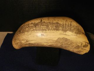 Nantucket Whale Museum Nwm Artek Faux Sperm Whale Tooth Carved Scrimshaw photo