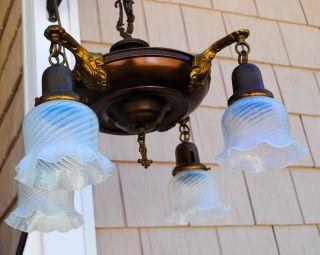 Antique Brass 4 Light Hanging Lamp Chandelier Opalescent Shades photo