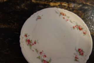 1900 ' S Tea Tile/trivet - White W/garlands Of Roses - Marked P S Germany - Lovely - photo