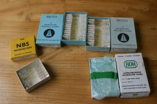 3 X Boxes Britex Nbs Microscope Slides 29 Insect Parts Bee & Wasp,  24 Blank photo