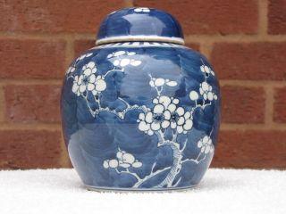 19th Century Chinese Blue And White Prunus Ginger Jar photo