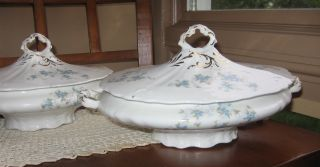 Pair Us Pottery Company Blue Floral Porcelain Wellsville Ohio Oval Tureen photo