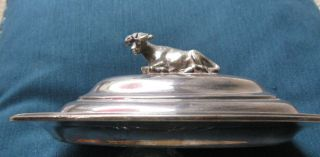 Pre.  1895 Antique Cow Handle Butter Dish 7 X 5 Inches Very Design photo