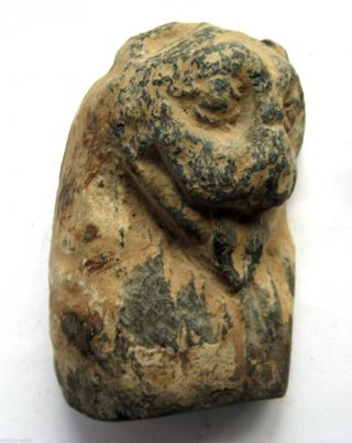 Circa.  200 A.  D Large Gandhara - Kushan Empire Stone Statue - Bust Of Lion photo