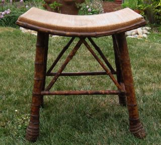 Rare Antique Victorian Tiger Bamboo Stool Late 1800 ' S Early 1900 ' S Unusual photo
