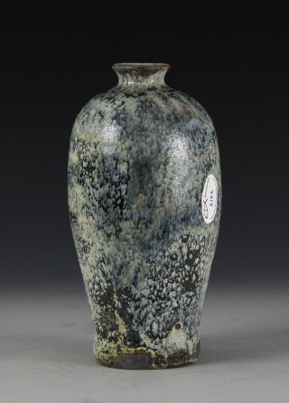 Antique Chinese Meiping Form Vase With Unusual Glaze photo