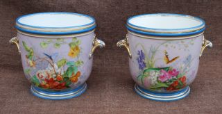 Large Pair Antique Hand Painted Gilt Paris Porcelain Jardiniere Planter 19th C photo