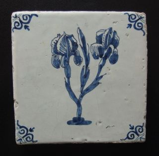 17th Century Dutch Delft Tile Large Flowers C.  1650 photo