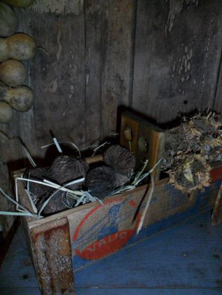 Primitive Early Look Bin,  Old Wood Cheese Box,  Lath Legs,  Sunflower Heads/walnuts photo