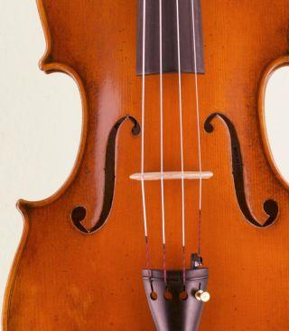 Great 4/4 Viola Ready To Play Bratsche Violin Violon Geige L:g.  L.  Bisiach 1958 photo