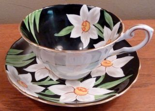 Antique Tuscan Bone China Cup And Saucer With Big White Flowers On Black photo