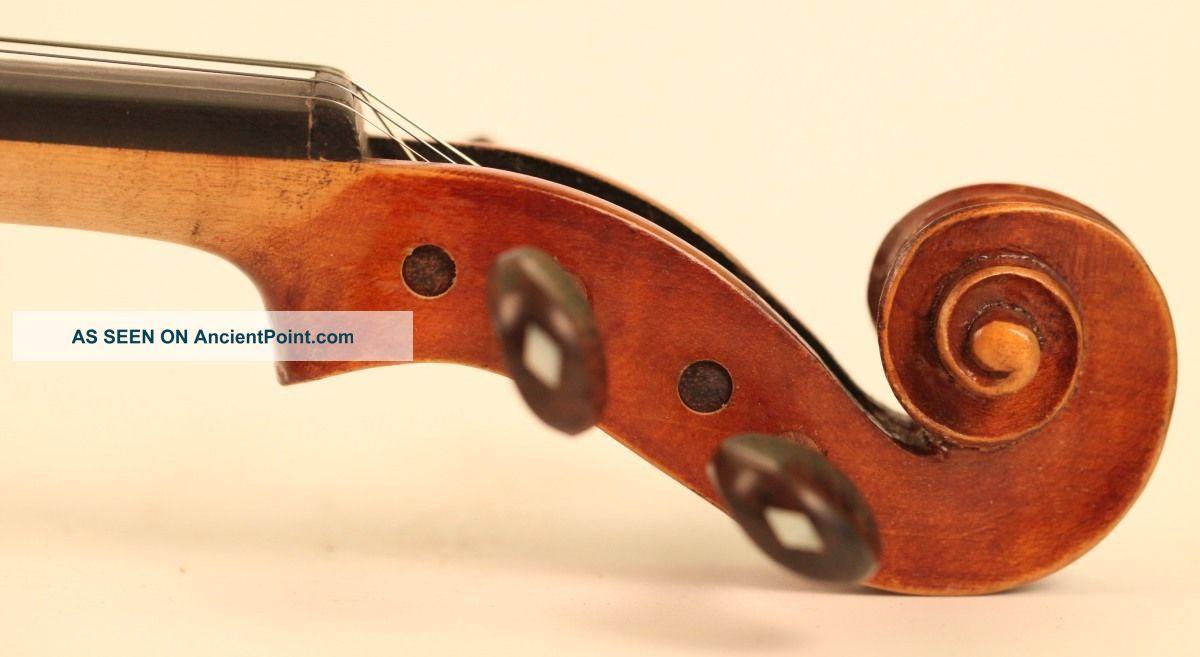 Viola String photo 9 Viola