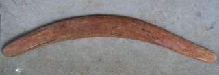 Old Aboriginal Boomerang - Surface Find - Found In The Desert In The 1950 ' S photo