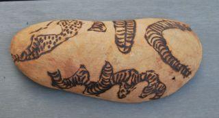 Old Pitjantjatjara Aboriginal Coolamon Early Made Or Trade Handicraft photo
