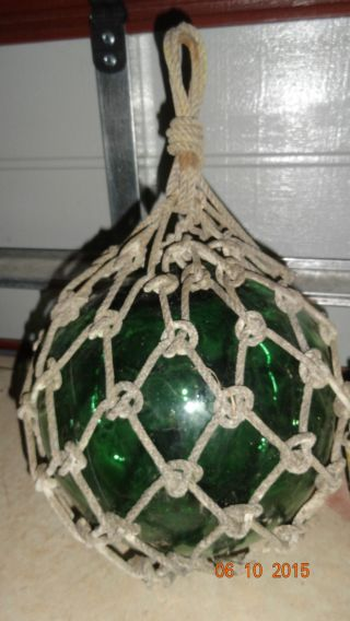 Vintage Japanese (large) Green Glass Float - Buoy Rope Netting 1950 ' S photo
