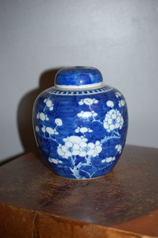 Chinese Antique Prunus & Hawthorn Jar - 19thc photo