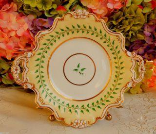 Gorgeous Antique 19c Worcester Porcelain Serving Plate Flowers Gold Gilt photo