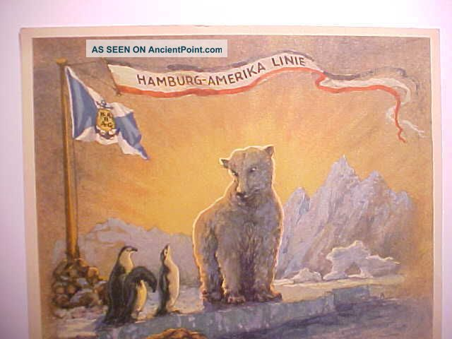 1936 Hamburg Amerika Line Crossing Arctic Circle Color Certificate W/ Polar Bear Other Maritime Antiques photo
