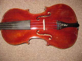 Jacobus Stainer 4/4 Antique Violin photo