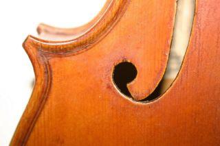 Old Antique 4/4 Italian Violin Label Pedrazzini Cond Exl Sound photo