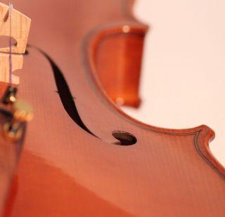 Italian Masterpiece Violin Poggi Violon Violine Violino Powerful Sound photo