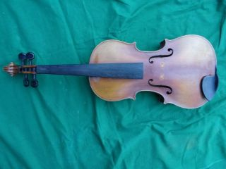 Old Antique Anotonio Curatoli Violin C.  1906 Strad Copy Near photo