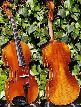 Fine Vintage Czech Violin Labelled Josef,  Syn Venceslava Metelky.  A,  Build & Tone photo