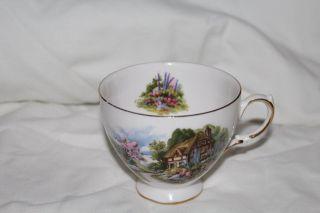 England Royal Vale ' English Cottage Garden ' White Tea Cup 7382 - Bone China photo