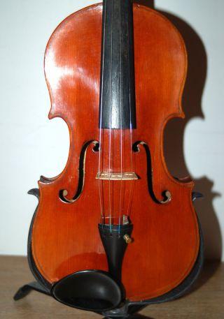 Fine Antique 4/4 Fullsize Violin - Label Antonio Sgarbi Roma - From 1886 photo