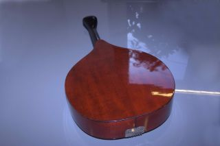 Antique Old Vintage Waldzither Cittern - - Mandola Mandolin Octave Banjo photo