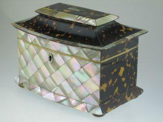 Large Antique Regency Blonde Faux Tortoiseshell Tea Caddy Circa 1820 photo