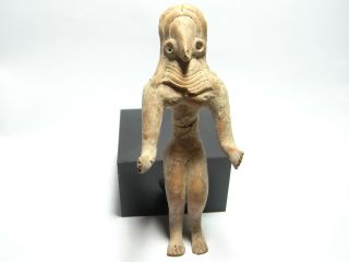 Indus Valley Harappan 3000 - 1700 Bc Indus Valley Fertility Statue.  (a795) photo