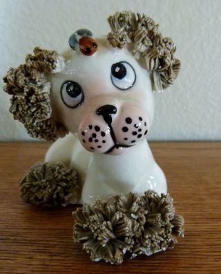 Vintage Comical Spaghetti Poodle Dog Figurine 1950 ' S With A Bug On His Face photo