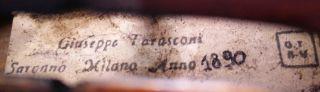 Infrequent Antique Italian - Giuseppe Tarasconi Labeled 4/4 Old Master Violin photo