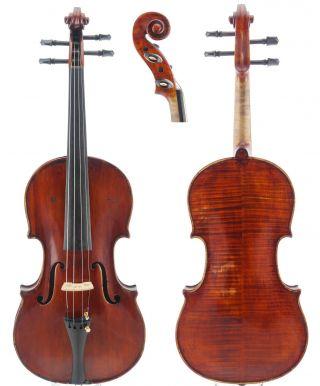 Enrico Politi Old Labeled Antique Italian 4/4 Master Violin photo