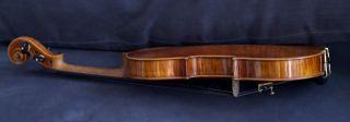 Modern Copy Very Old 4/4 Violin L:l.  Bellafontana 1948 Violon Geige photo