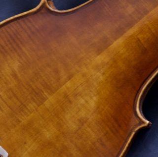 Modern Copy Very Old 4/4 Violin L:luigi Amici Roma Violon Geige photo