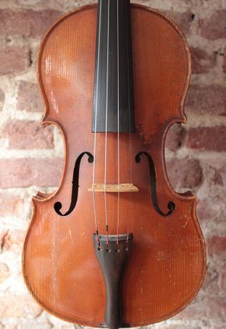 An Old Violin Labeled