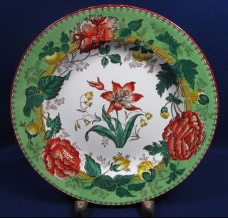 Antique Wedgwood Horticultural Polychrome Plate Green Rim Transferware 1879 photo