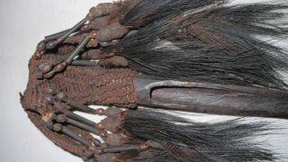 Asmat Bone Dagger,  Guinea,  Primitive.  Tribal,  Knife,  Artifact photo