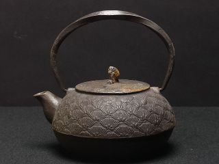 Antique Japan Tea Ceremony Iron Teapot Bonsai Pine Pattern By Maruzen photo